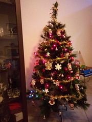IMG_20171208_203710 (Puntin1969) Tags: verbania suna albero alberodinatale alberello lucine telefonino