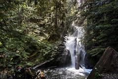Lake 22_Washington_Falls_Forest_1 (Zero State Reflex) Tags: washington lake22 hiking forest pnw trees nature photography canon 5dmark3