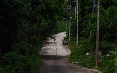 december.2017-Kata-Beach-Phuket-canon-5773
