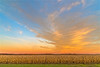 (Daniel000000) Tags: sky blue orange green fall autumn colors clouds cloud sunset landscape nikon art new corn old nature bright country tree trees rural sun light yellow colorful weather