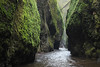 Oneonta Gorge (russ david) Tags: oneonta gorge columbia river or oregon april 2017 landscape moss