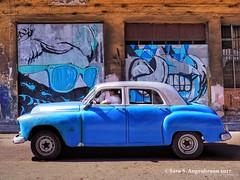 Blue Car and Graffiti (augenbrauns) Tags: streetphotography cuba olympusomdem1ii olympus vintagecar classiccar graffiti bluecar blue