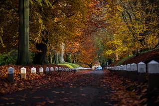 Autumn ..