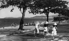 Nha Trang Beach - Biển Nha Trang - 1965 (Nguyen Ba Khiem) Tags: 1960s 1965 hìnhảnhxưa việtnam việtnamxưa nhatrang nhatrangxưa nguyễnbámậu phongcảnh biển nước dừa áodài nónlá đườngphố