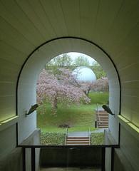 Trottier Observatory (jvde) Tags: 3570mmf3345nikkor burnaby coolscan film fujicolor gimp nikonfe sfu