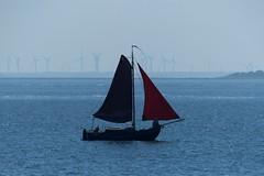 Segelschiff vor Föhr (dervonderwaterkant) Tags: nordsee föhr schleswigholstein nordeutschland küste wasser meer nordfriesland segelschiff windräder
