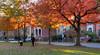 Fall in Logan Circle (Ronnie R) Tags: washington dc logan fall trees twilight dcist autumn light shine leaves nikon d750