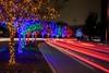 20141221vitruvianpark_016.jpg (Dr. Hilton Goldreich) Tags: xmas vitruvianpark christmaslights