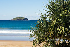 Past the pandanus (.Stephen..Brennan.) Tags: emeraldbeach fa77 pentaxk3 seascape newsouthwales australia au