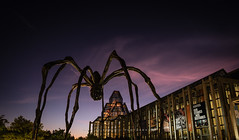 Maman - Our Stories (www.eileenseto.photography) Tags: canada maman nationalgalleryofcanada ontario ottawa art building capital city evening gallery public sculpture spider twilight