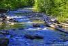 "Sulivan Creek (jimgspokane) Tags: sullivancreek camping countryroads forests creeks trees ""nikonflickraward"""