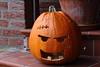 Rotting pumpkin (dididumm) Tags: autumn fall rotting pumpkin happyhalloween jackolantern frankenstein kürbis verrotten verfallen herbst