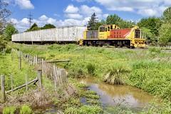 The best spot on the branch? (SemmyTrailer) Tags: dsg dsg3018 newstwas ruakura waikato newzealand railway train dairy shunt kiwi rail toshiba