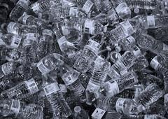 Bottled (arbyreed) Tags: arbyreed bottles bottledwater monochrome bw blackandwhite tonedmonochrome lotsofthings bin box water