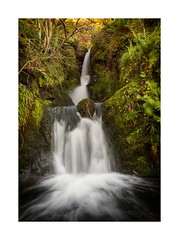 Secret Places (Douglas Hamilton ( days well spent )) Tags: secret places little ochil hills ochils scotland kit lens nikon alva glen waters burn landscape clackmannanshire ferns long exposure