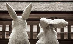 Bunnies (campra) Tags: japan shimane izumo 島根 出雲 shrine shinto rabbit okuninushi legend statuette figurine inaba duo two