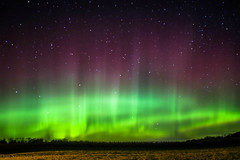 Explosive dancing Aurora's (Dan's Storm Photos & Photography) Tags: nature northernlights nightscape night nightsky nightlife nighttime nightphotography nightscapes skyscape skyscapes sky landscape landscapes astronomy auroraborealis auroras astrophotography aurora solar solarwind sun