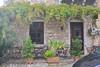 Vine-Shaded Verandah (RobW_) Tags: vine verandah kardamyli mani messenia peloponnese greece monday 06nov2017 november 2017