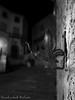 Sfocato (frillicca) Tags: 2017 agosto august bn bw biancoenero blackandwhite giglio largodelplebiscito monochrome monocromo montefiasconevt muro night notte panasoniclumixlx100 pianta tuscia wall