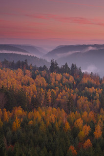 Waldgold - Nagoldtal, Northern Black Forest