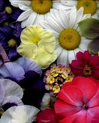 58618.07 bouquet (horticultural art) Tags: horticulturalart flowers bouquet