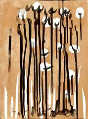 Fleur du Karis (pni) Tags: chemigram photogram vnf västranylandsfolkhögskola school teaching education karis karjaa finland suomi pekkanikrus skrubu pni