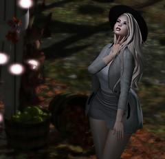 A New Place (Sadystika Sabretooth) Tags: beusy pocketgacha chicmoda foxcity picturerotica secondlife sl sadystika sadystikasabretooth slwindlight catwa maitreya 4mesh whimsical blond blonde blog