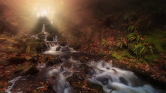 Heavenly Falls (Adam West Photography) Tags: heavenly light fog mist magical mystical adamwest lakedistrict cumbria england uk britain fineart water stream bracken autumn leaves longexposure timelapse