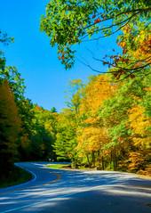 Early Autumn Colors Digital Art (randyherring) Tags: fall georgia northgeorgia vogelstatepark autumn color colors leaves mountains season trees
