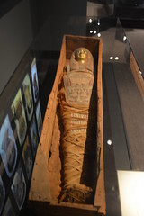 Chicago, IL - Grant Park - Field Museum - Ancient Mediterranean Cultures in Contact - Egyptian Mummy (jrozwado) Tags: northamerica usa illinois chicago museum fieldmuseum naturalhistory grantpark egyptian mummy
