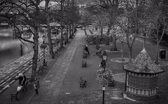 Promenade Chester (joshdgeorge7) Tags: chester vintage blackandwhite grain pentax