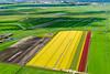 SMS_20170428_1072.jpg (Luchtfotografie SiebeSwart.nl Aerial Photography) Tags: luchtfoto spoorwegen bloembollen boortunnel tunnel agrolandentuinbouwalgemeen nederland ruimtelijkeordening verkeerenvervoerlogistiek hsl spoortunnel groenehart bollenvelden spoorlijnen hogesnelheidspoor hogesnelheidslijn verkeerenvervoerrail aerial aerialphoto aerialshot aerialview birdsview bloembol bol bollen bollenveld boortunnelgroenehart bulb bulbfields bulbs drilledtunnel drlledtunnel flowerbulbs greenzone hslzuid hsllijn hst hstsouth highspeedtrain holland koeientunnel netherlands railtracks railway railwaytunnel railways spacialdesign spoorlijn spoorweg transport railroadtracks railwaytracks