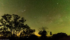 green sky at night (andrew.walker28) Tags: airglow green darling downs queensland australia stars orion starscape long exposure astrophotography landscape