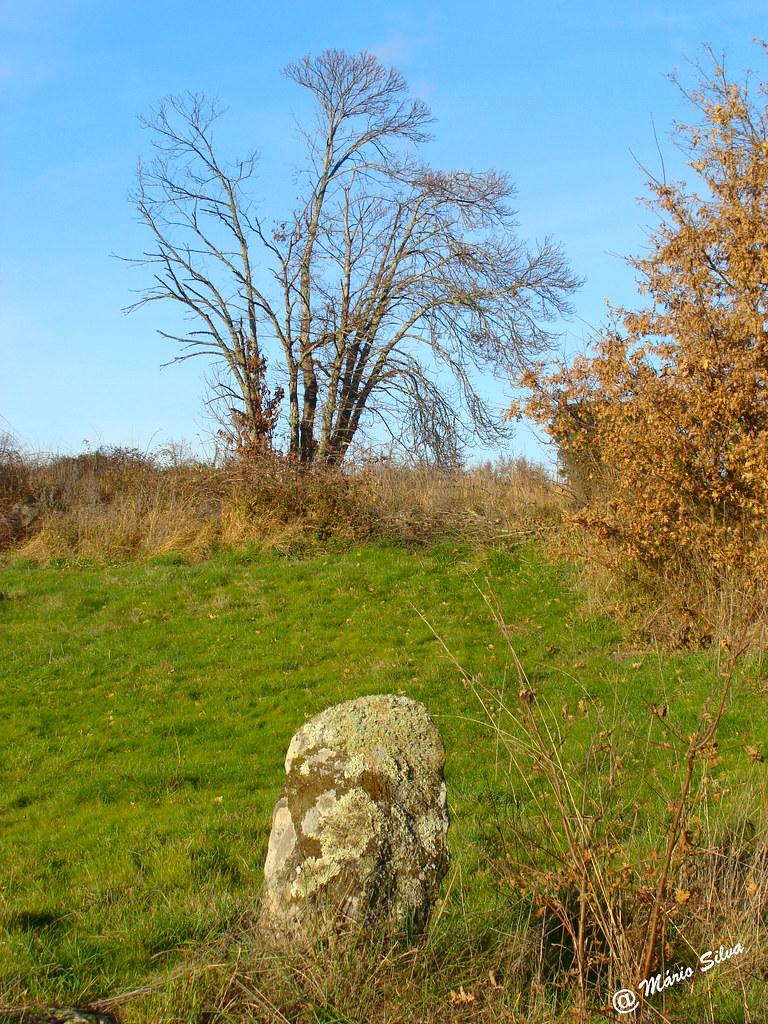 Águas Frias (Chaves) - ... o marco, o campo e a árvore ...