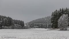20171128000993 (koppomcolors) Tags: koppomcolors winter vinter snö snow värmland varmland sweden sverige scandinavia