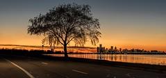 A Detroit Sunset (Wes Iversen) Tags: belleisle detroit michigan nikkor24120mm cities highways roads skylines sunsets trees belleislepark reflections