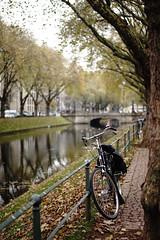 bike@Kö, Düsseldorf 31 (Amselchen) Tags: bicycle water reflection kö düsseldorf bokeh blur dof depthoffield season lateautumn sony a7 alpha7 zeiss carlzeiss sonnart1855 sonnar5518a fe55mmf18za sonyilce7