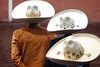 DSC08192.jpg (Victor Muruet) Tags: charrerria mexicana charros sombreros caballas mexicans mexicanos