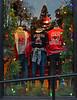 Georgia (davidwilliamreed) Tags: shop window georgia bulldogs clothing christmas decorations dwwg reflections