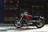 a65_DSC_5456 (ducktail964) Tags: bsa a65 lightning motorcycle taiwan scrambler custombike