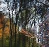 River Lednock (Edinburgh Nette ...) Tags: october17 glens glenlednock rivers reflections abstracts
