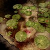 There is no escape (lorenka campos) Tags: stories fairytales water lillypads selfportrait portrait mobileartistry popart green conceptual modernart artdigital art