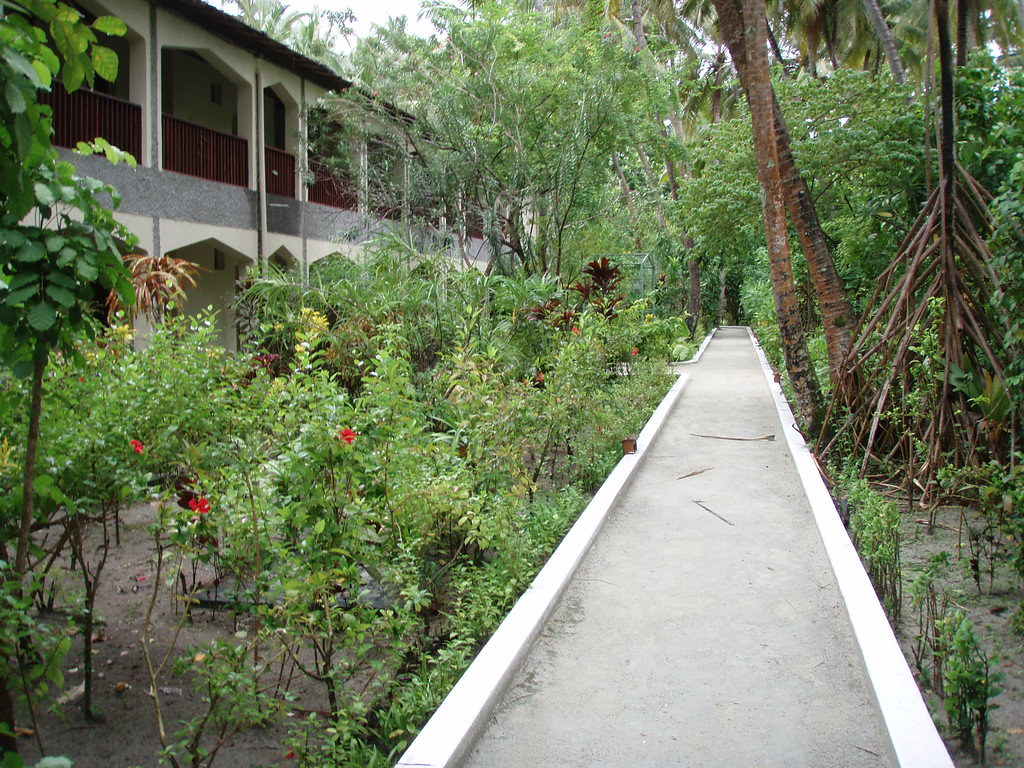Standard Rooms & Path