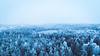 The blue forrest (mikbang) Tags: winter 2017 mikaelbangandersen vinter snø snow blå skog trees void snowed down drone dji djiphantom3 djiphantom3standard