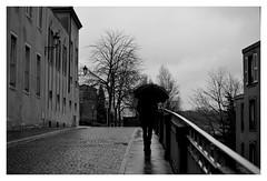 Do you remember... (De l'autre côté du mirOir...) Tags: metz moselle lorraine 57 fr france french nikon nikkor d700 nikond700 noiretblanc noirblanc nb blackwhite bw négroyblanco monochrome rue street personnes pluie 7003000mmf4556