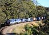 4204s GL109-GL108 Fosters Corner 10/12/2017 (Rhys McDonald) Tags: shitbox southaustralia silentdeath cheap belairnationalpark adelaidehills 7fdl12 4204s ge fosterscorner glclasslocomotive cfcla bowmansrail
