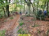 """2017-11-08  Huizen 25 Km (135) • <a style=""""font-size:0.8em;"""" href=""""http://www.flickr.com/photos/118469228@N03/24408719178/"""" target=""""_blank"""">View on Flickr</a>"""
