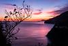 Tramonto (Amalfi) (Ondablv) Tags: amalfi costiera amalfitana ondablv tramonto colori sunset violet sea mare ramo secco