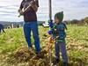 IMG_1859 (Potomac Conservancy) Tags: communityconservation treeplanting virginia leesburg whitesford loudouncounty growingnative volunteer 2017 october fall kids