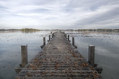autumn lake (koaxial) Tags: pa215374p1ma wörthsee lake water jetty steg wasser herbst autumn fall leafs blätter symmetry
